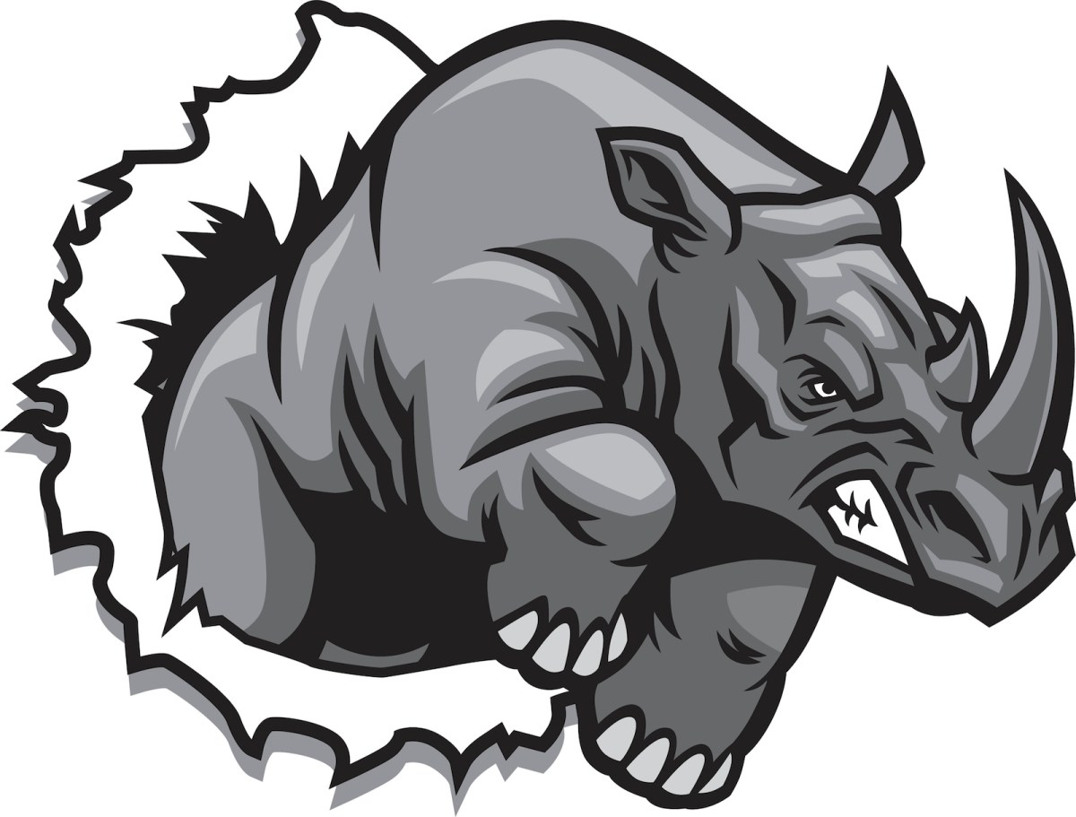 'Gray rhinos' can be a feature of trade with China. Illustration: iStock