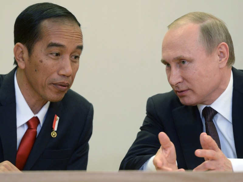 Russian President Vladimir Putin (right) talks to Indonesian President Joko Widodo at the Bocharov Ruchei state residence in Sochi on May 18, 2016. Photo: AFP/Host Photo Agency