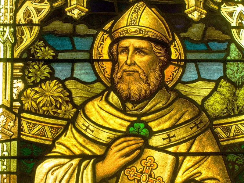Saint Patrick. Photo: Thad Zajdowicz