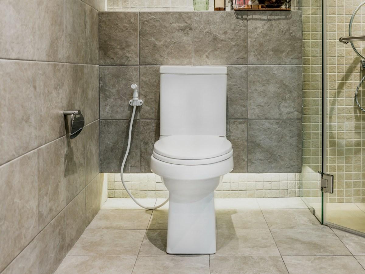 A toilet Photo: iStock
