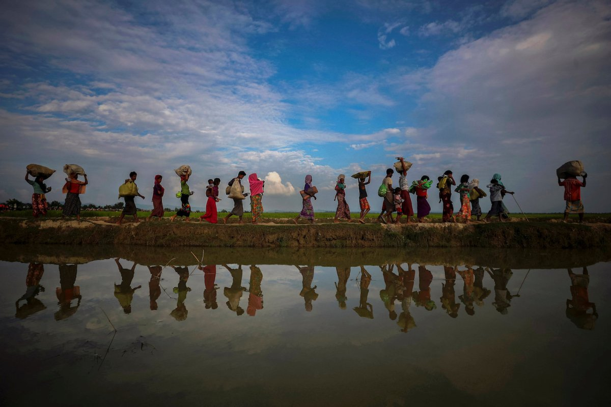 Rohingya refugees reflected in rain water along an embankment next to paddy fields after fleeing from Myanmar into Palang Khali, near Cox's Bazar, Bangladesh November 2, 2017. Photo: Reuters/Hannah McKay