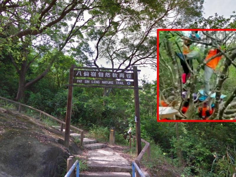 Pat Sin Leng Nature Trail, the New Territories Photo: Google Maps, 山野龍咁威@Facebook