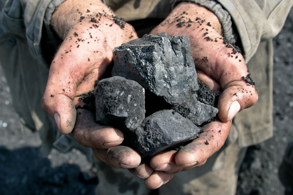 coal miner in the hands of coal background. Photo: iStock