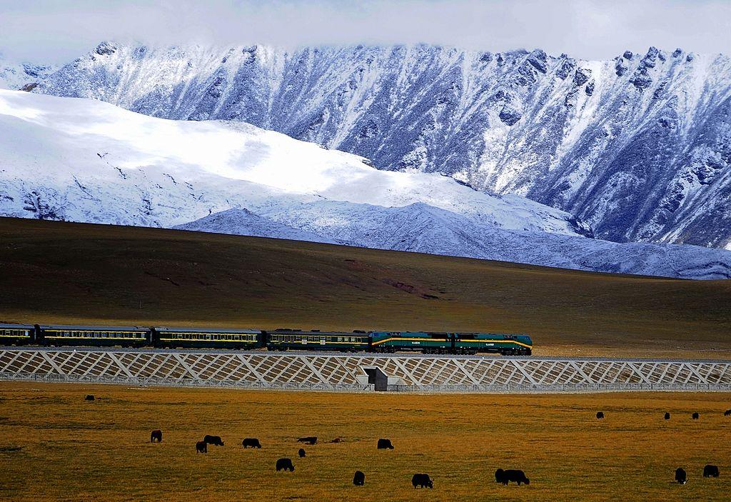 A train runs on the Qinghai-Tibet railway, the world's highest rail line. Photo: Jan Reurink/Wikimedia
