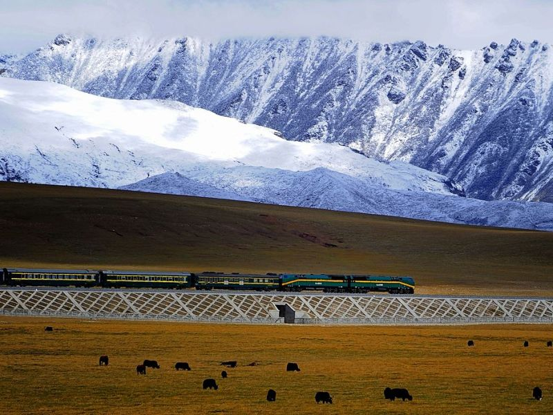 A train runs on the Qinghai-Tibet railway, the world's highest rail line. Photo: Jan Reurink/Wikimedia