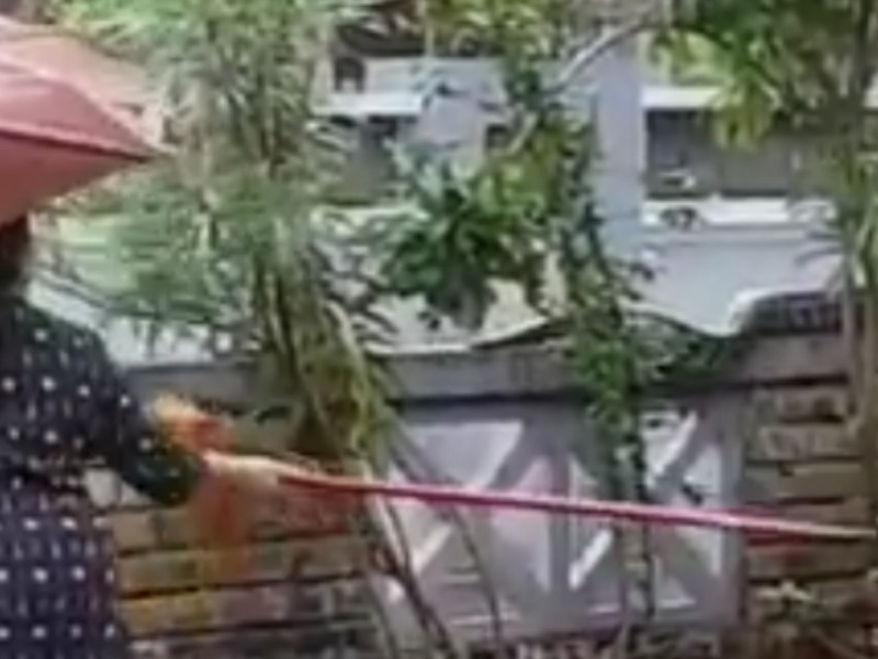 The woman chases the snake away with a broom. Photo: YouTube