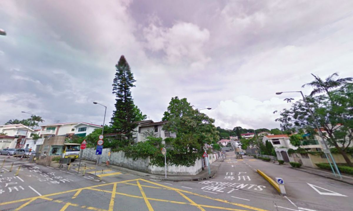 Tai Po, the New Territories Photo: Google Maps