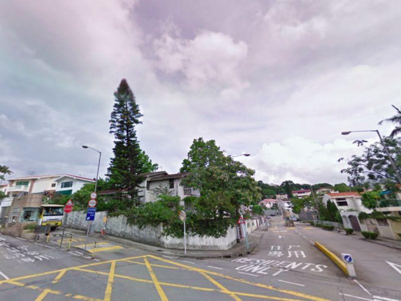 Tai Po, the New Territories Photo: Google Maps
