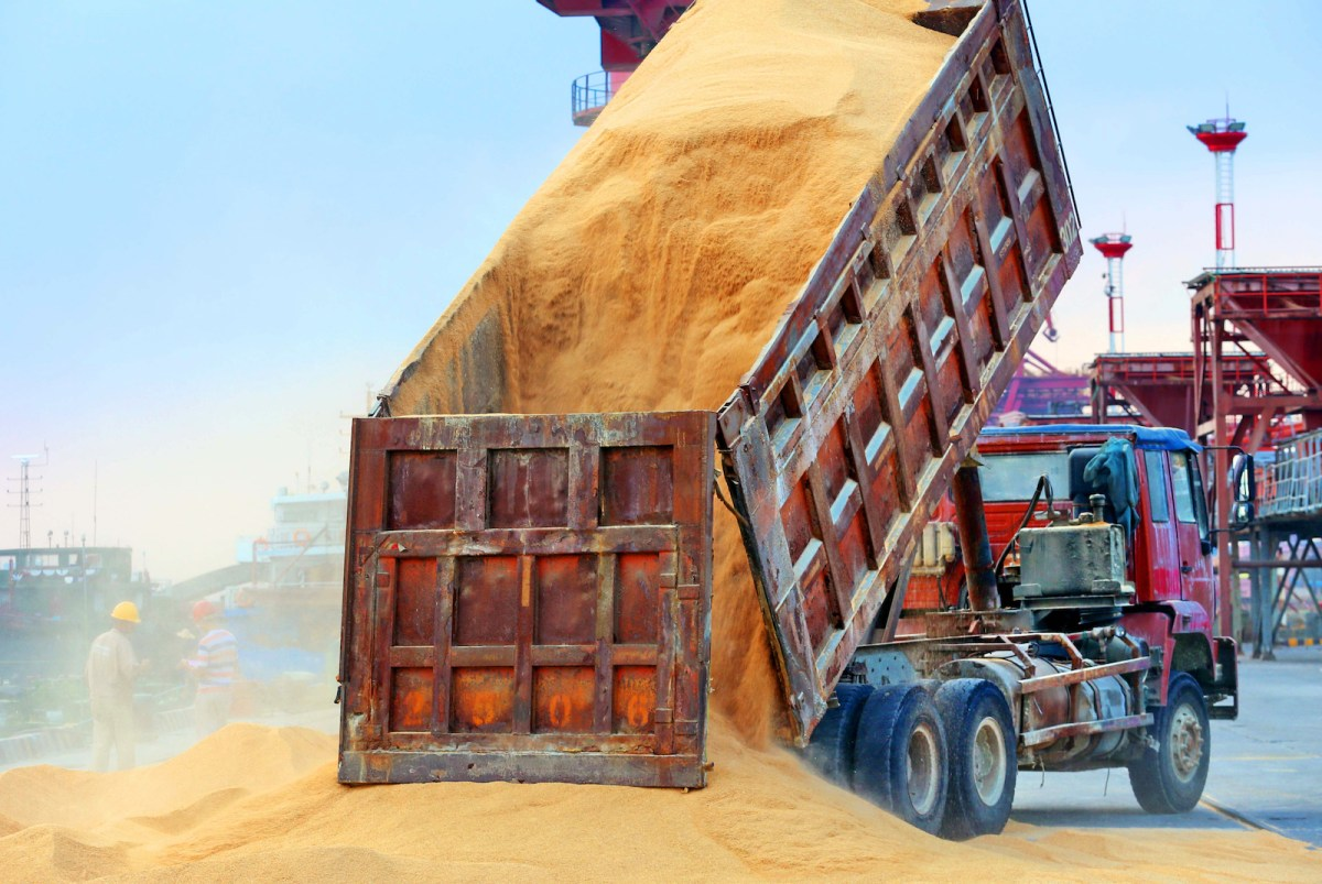 A truck unloads animal feed made from soybeans imported from Brazil at a port in Nantong in China's eastern Jiangsu province in August. Photo: AFP