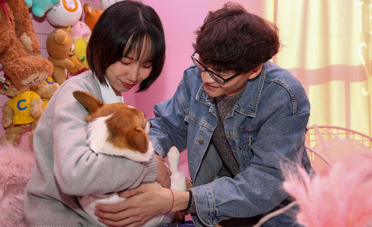 Zhu Wenyan (L) and Liu Xinyi play with a corgi at the Hello Corgi Cafe in Shanghai. Photo: AFP