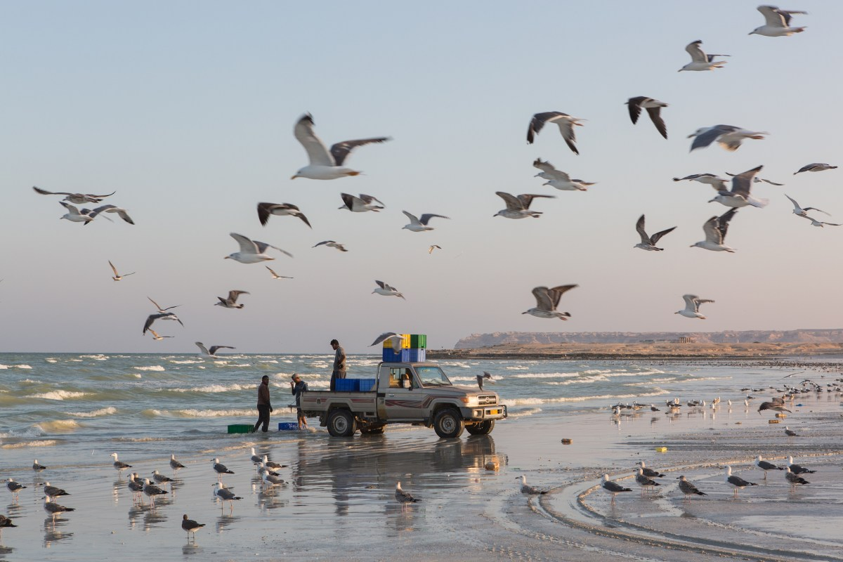 Fishermen can be see at work on the shores of the Arabian sea, in Duqm, Oman. Photo: Sebastian Castelier
