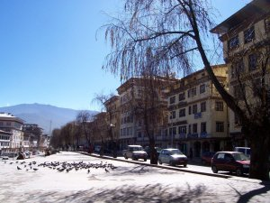 Best Places To Visit In Thimphu Bhutan - Norzin Lam to Clock Tower Square