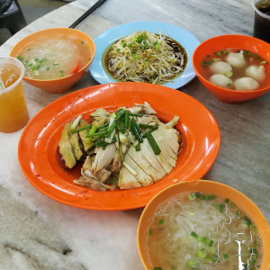 A delicious and full meal - Chicken with Bean Sprouts, Hor Fun (Flat white noodles), and meat balls in soup