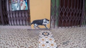 Things To Do In Ipoh - Mural Art of a cat catching mice
