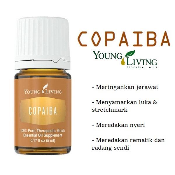 Tumbuhan Obat Mimba Dan Khasiatnya Dalam Pengobatan Jerawat: Young Living Copaiba Essential Oil Anti Inflamasi Bagus