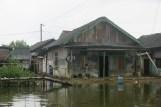 Bootspassage durch die Mangrovensümpfe der Nusa Kambangan - Mutean