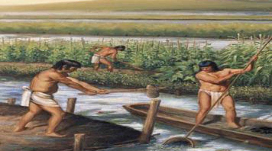 agricultura-maya-asiesmerida