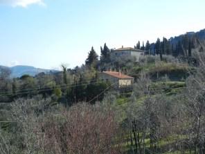 tuscan 4