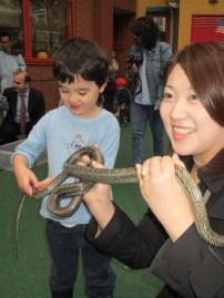 petting zoo 12