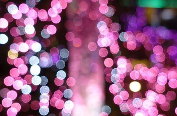 .#xmas #ornaments #lights #クリスマスツリー #prilaga #christmaslights #クリスマスイルミネーション #winter #クリスマス #decorations #イルミネーション #holiday #illusration #merrychristmas #xmas #instagood