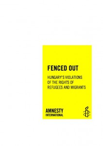 fenced out amnesty