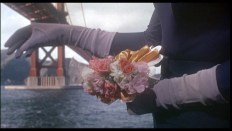 Film_Vertigo_bridge