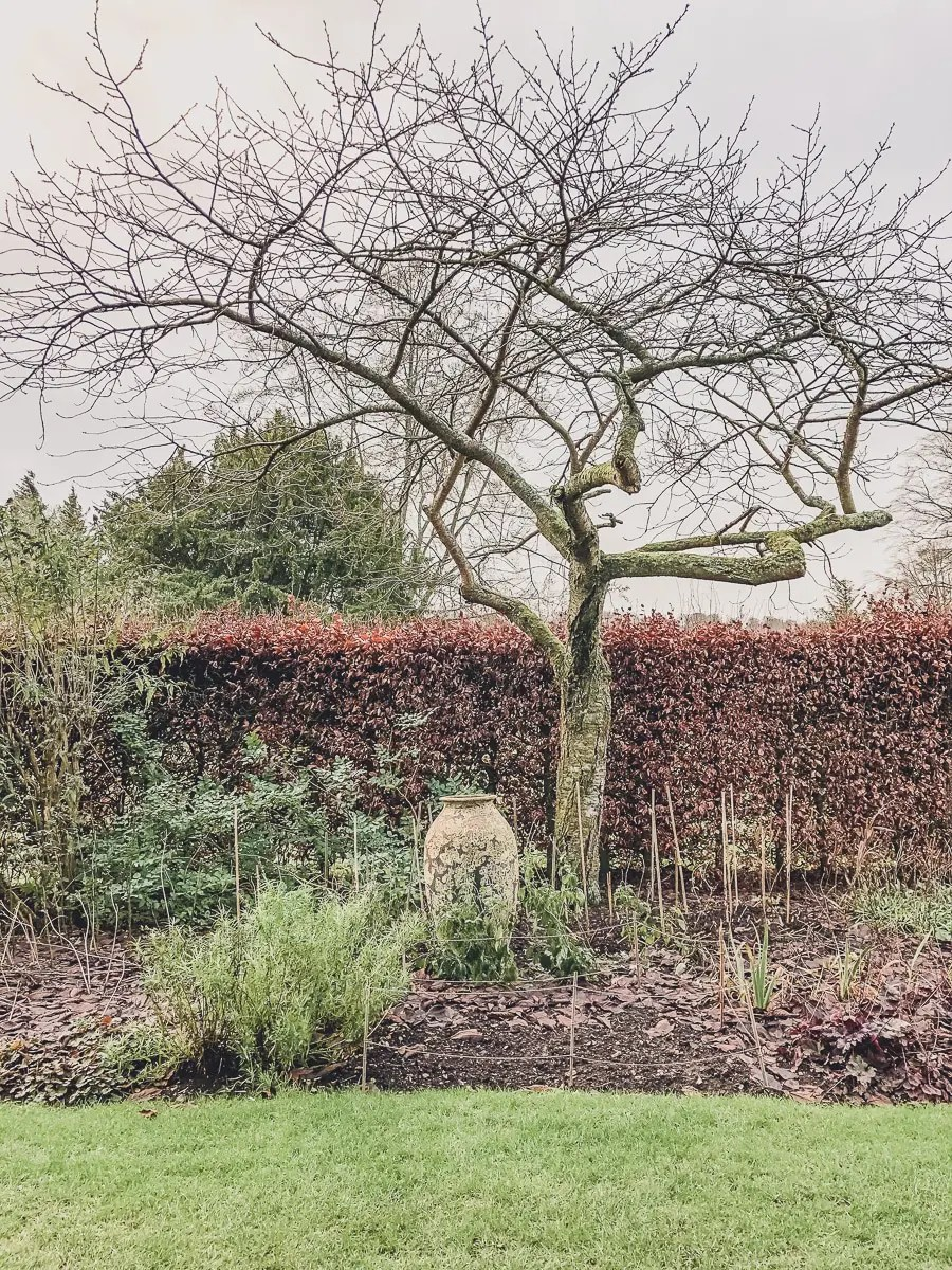 A View of the Gardens in winter at Highclere Castle
