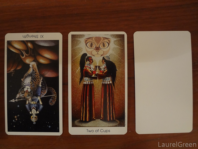 a three card tarot spread with strength reversed, the two of cups and a blank card