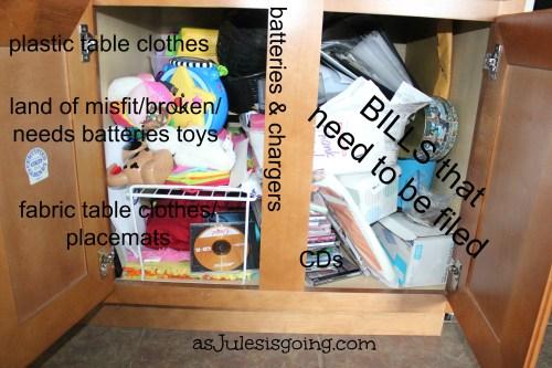 My Monica's Closet Cabinet Organization Bwahahahaha