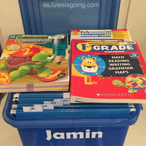 Homeschool Archives - as Jules is going