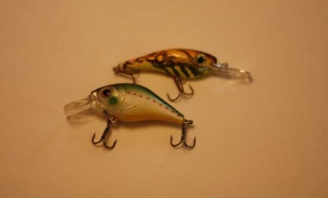 learning to use lures try a crankbait