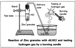 Write an activity to show the reaction of acids with metals  CBSE Class 10 Science  Learn CBSE