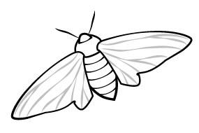 Cheap write my essay peppered moth simulation lab