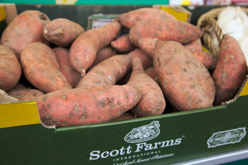 Sweet potatoes are becoming popular - from the US