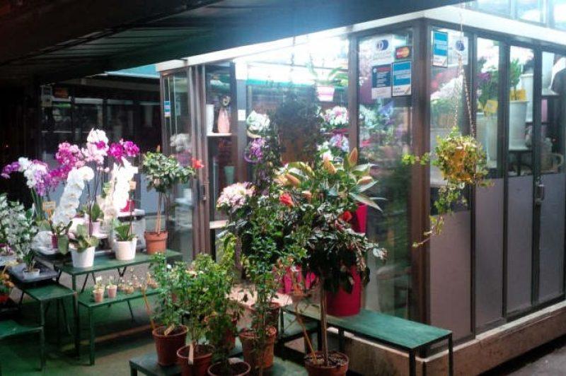 Flower shop at night