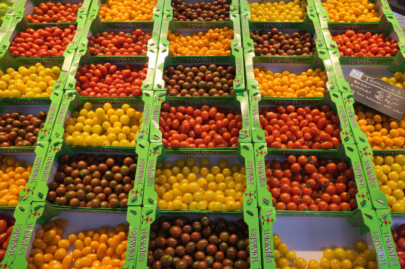 Commercial tomatoes are getting colourful