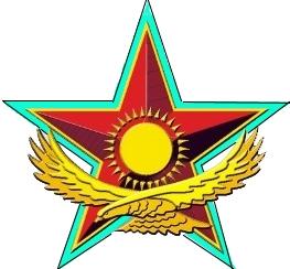 воруженные силы республики казахстан