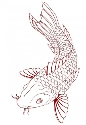 koi tattoo fish simple sketch designs meanings tribal