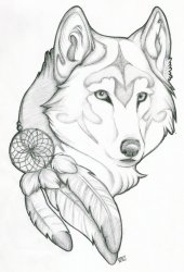 wolf tattoo head tattoos designs dreamcatcher catcher dream drawings drawing howling cool native wolves lobo tribal easy draw american indian