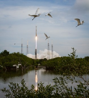Taking Flight at Cape Canaveral Credit: (NASA/Bill Ingalls)