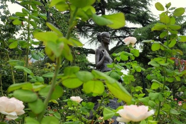 Принцесса Грейс в окружении роз