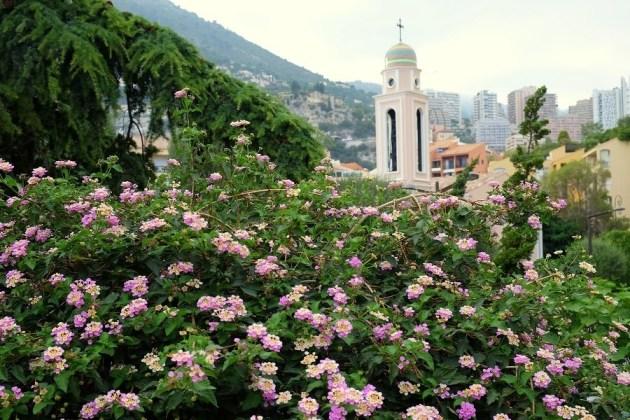 Сады княжества Монако