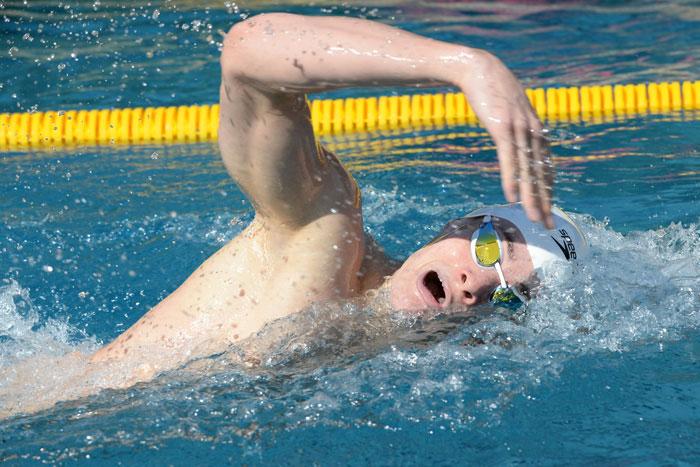 Schwimmer krault in Bahn