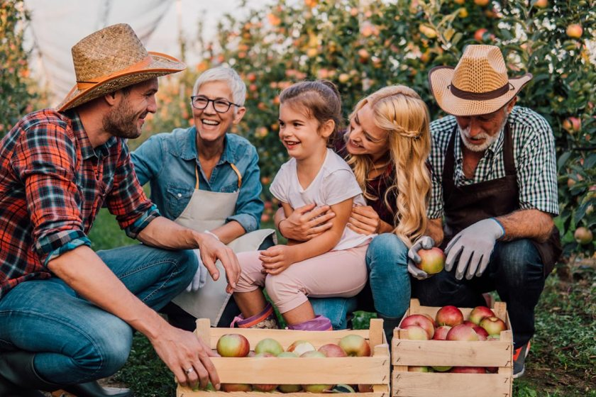 Multigenerational family in an apple orchard smiling