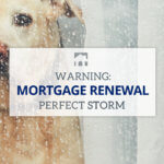 Image of a dog in the rain with text overlay that reads Warning: Mortgage Renewals Perfect Storm