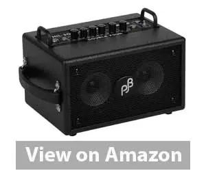 Phil Jones Bass Combo Amp Review