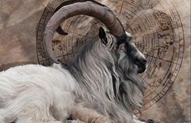January 2012 Horoscope