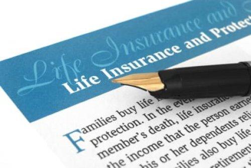 term life vs. whole life insurance