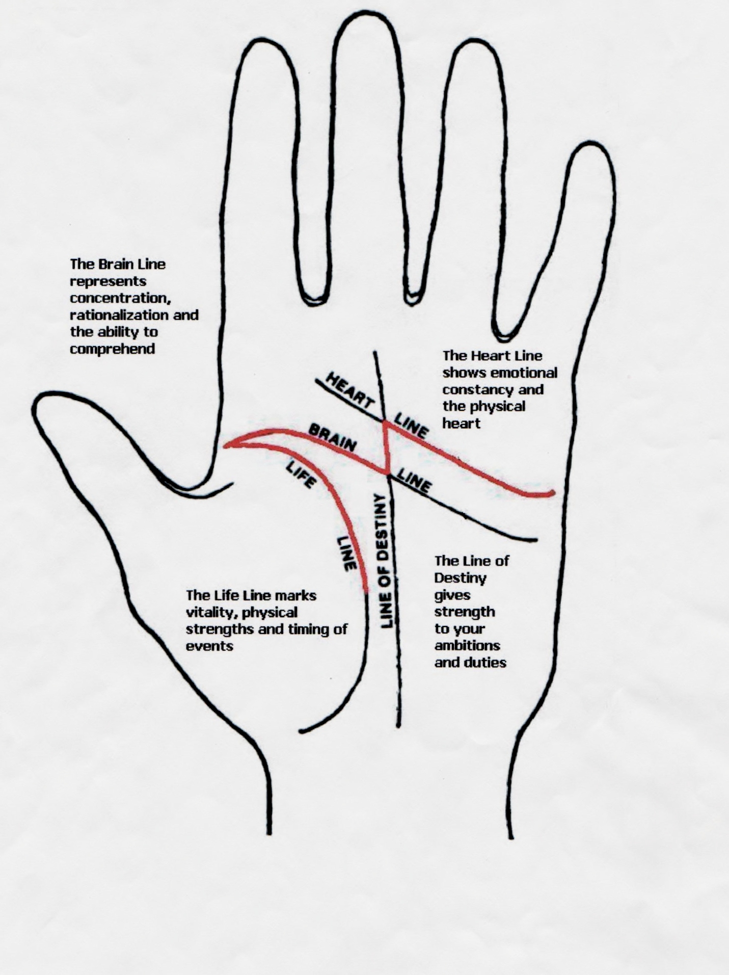 palmistry diagram marriage line john deere 4240 starter wiring question about m sign on palm