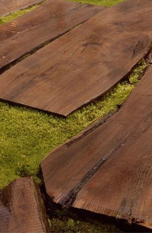 Black Locust Fence Posts For Sale North Carolina